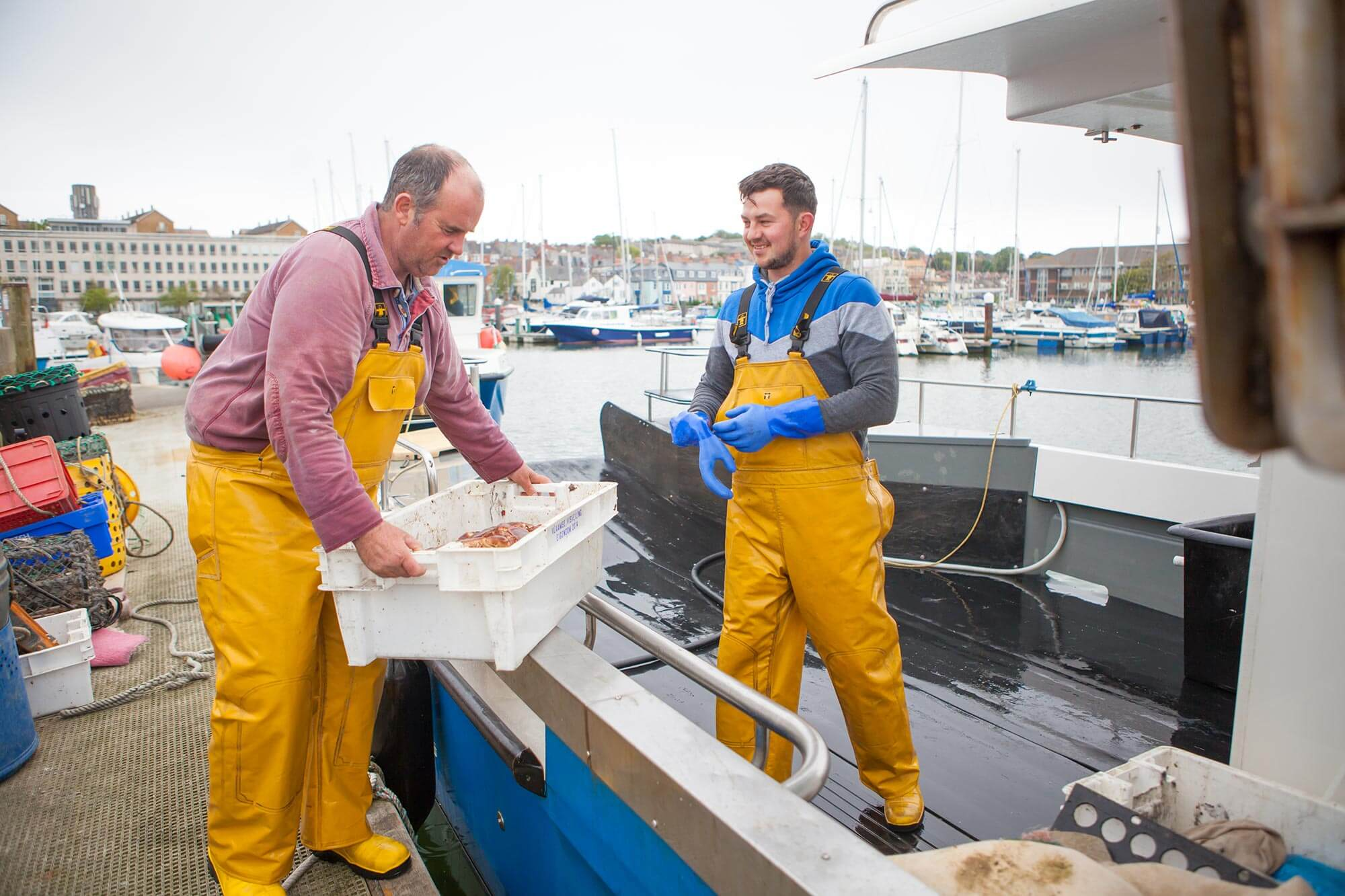 Freshly caught Crab and seafood | Dorset Shellfish
